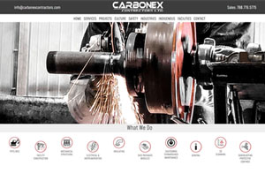 Carbonex Web Design